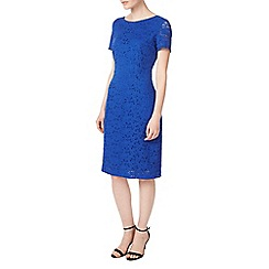 Precis - Petite jessie lace dress