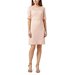 Precis - Fleur lace petite dress