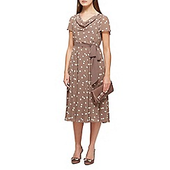 Jacques Vert - Savanna spot fit & flare dress