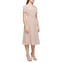 Jacques Vert - Lola lace dress