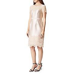 Precis - Petite Della Shimmer Dress