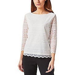 Precis - Petite stretch lace top