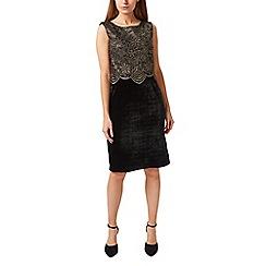Precis - Petite lace & velvet dress