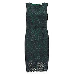 Precis - Petite lace double layer shift dress