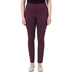 Studio 8 - Sizes 16-24 Susan darted jegging