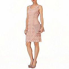 Phase Eight - Petal yves lace dress