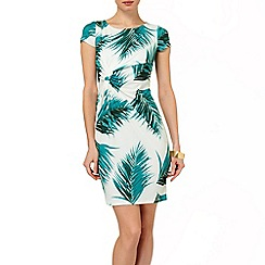 Phase Eight - Jade and Ivory alexandra print dress