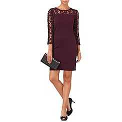 Phase Eight - Blackberry suzy lace dress