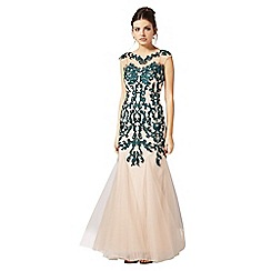 Phase Eight - Collection 8 nude and forest oralie embroidered dress