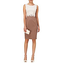 Phase Eight - Champagne and praline suzanna lace dress