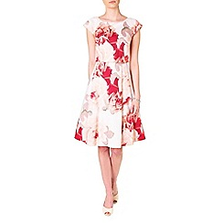 Phase Eight - Multi-coloured bernadette rose print fit and flare dress