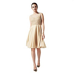 Phase Eight - Collection 8 liliana pearl dress