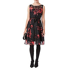 Phase Eight - Mimi fit & flare dress