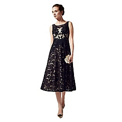 Phase Eight - Collection 8 cantana dress