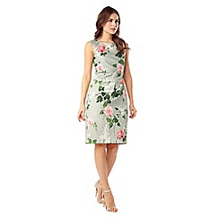 Phase Eight - Meadow Print Dress