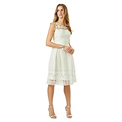 Phase Eight - Ivory lola lace dress