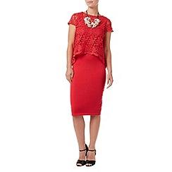 Phase Eight - Lexus Lace Knit Dress