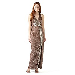Phase Eight - Pale Gold raphael sequinned dress