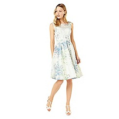 Phase Eight - Isadora Floral Dress