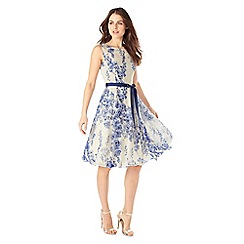 Phase Eight - Sky lana blossom dress