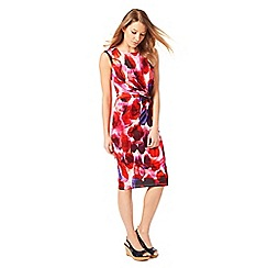 Phase Eight - Christie Smudge Print Dress