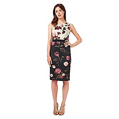 Phase Eight - Rose Scuba Dress