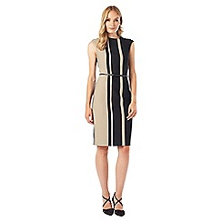 Phase Eight - Robyn Stripe Colour Block Dress