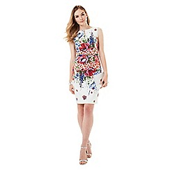Phase Eight - Louise Floral Dress