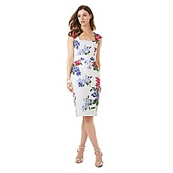Phase Eight - Lilia Floral Dress