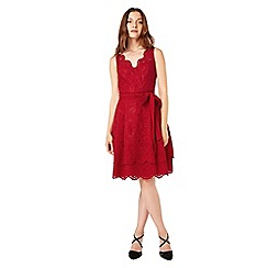 Phase Eight - Milly Lace dress
