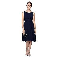 Phase Eight - Marti Chiffon Dress