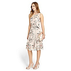 Phase Eight - Prudence Embroidered Dress