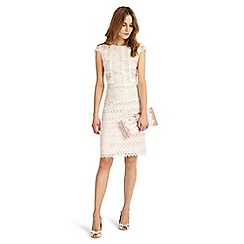 Phase Eight - Cameo and ivory ally lace layered dress