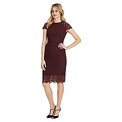 Phase Eight - Port dana dress