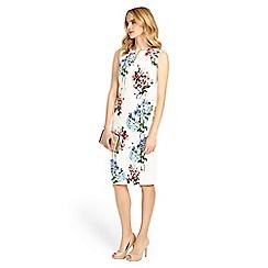 Phase Eight - Hydrangea print dress