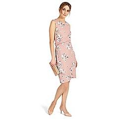 Phase Eight - Flo blossom print dress