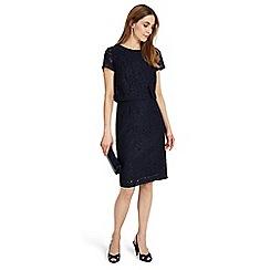 Phase Eight - Ira lace dress