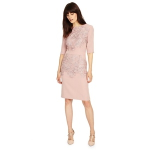Phase Eight Elizabeth dress