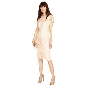 Phase Eight Macela dress
