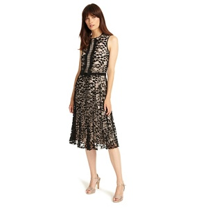 Phase Eight Powder and Black lucinda lace dress