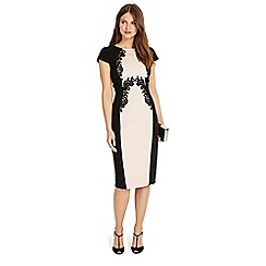 Phase Eight - Gilly lace trim dress