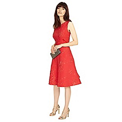 Phase Eight - Carmine gertie jacquard dress