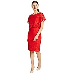 Phase Eight - Red sandra spot burnout dress