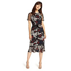 Phase Eight - Multi-coloured maylin embroidered dress