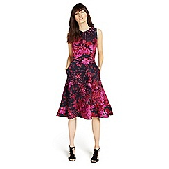 Phase Eight - Navy and Fuchsia fifi dress