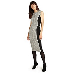 Phase Eight - Grey marl charlotte colour block dress