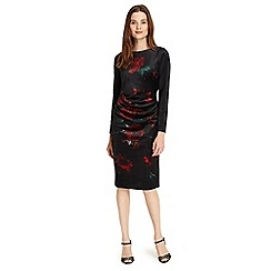 Phase Eight - Wilhelmina floral print dress
