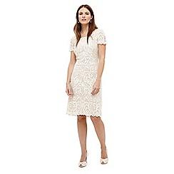 Phase Eight - Tatiana embroidered dress