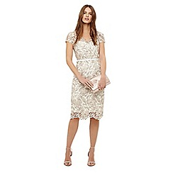 Phase Eight - Oyster lottie lace dress