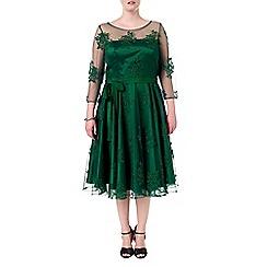 Studio 8 - Sizes 16-24 Yvette dress